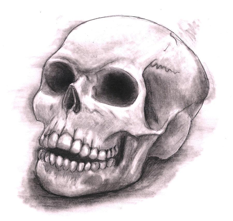 900x856 Skull Drawing ~ 3d Drawing
