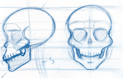 400x255 To Draw The Skull