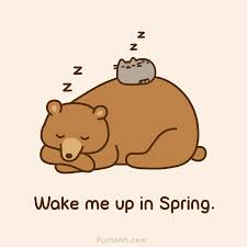 225x225 Image Result For Sleeping Bear Drawings Inspiration