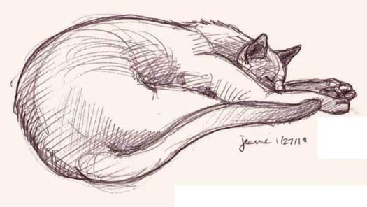525x296 Art By Jeane Nevarez Cat Napping