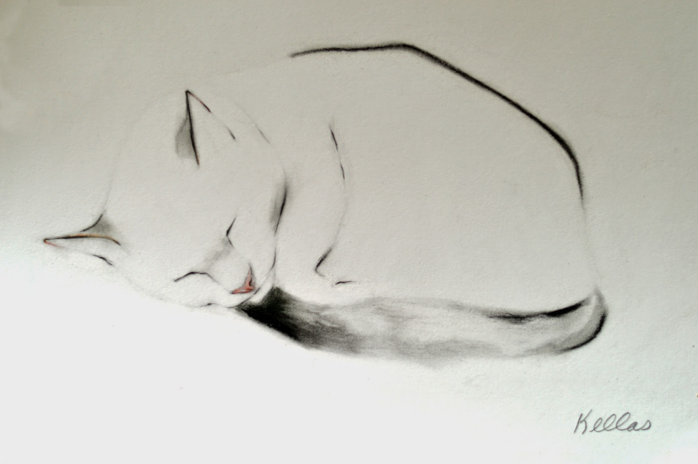 1400x931 Kellas Campbell Artfinder Sleeping Charlie By Kellas Campbell