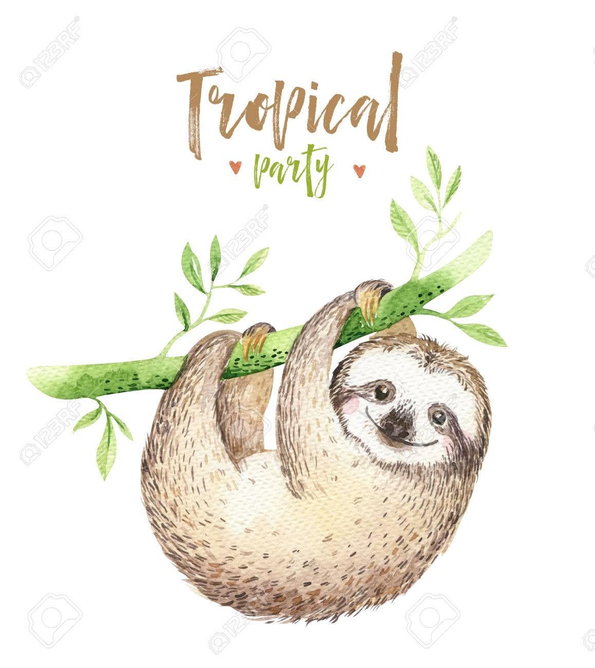 1158x1300 Baby Animals Sloth Nursery Isolated Painting. Watercolor Boho