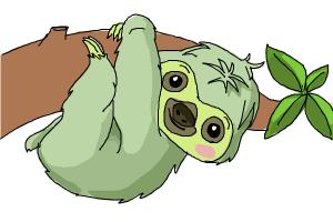 300x200 How To Draw A Sloth