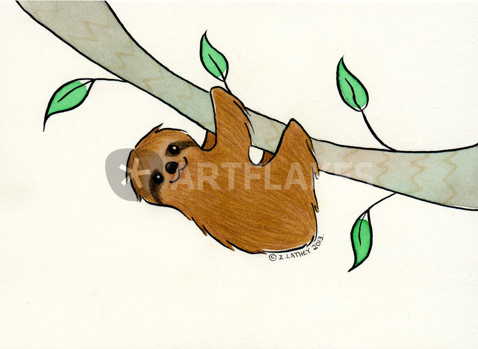 950x694 Sloth In Tree Drawing Art Prints And Posters By Zoel