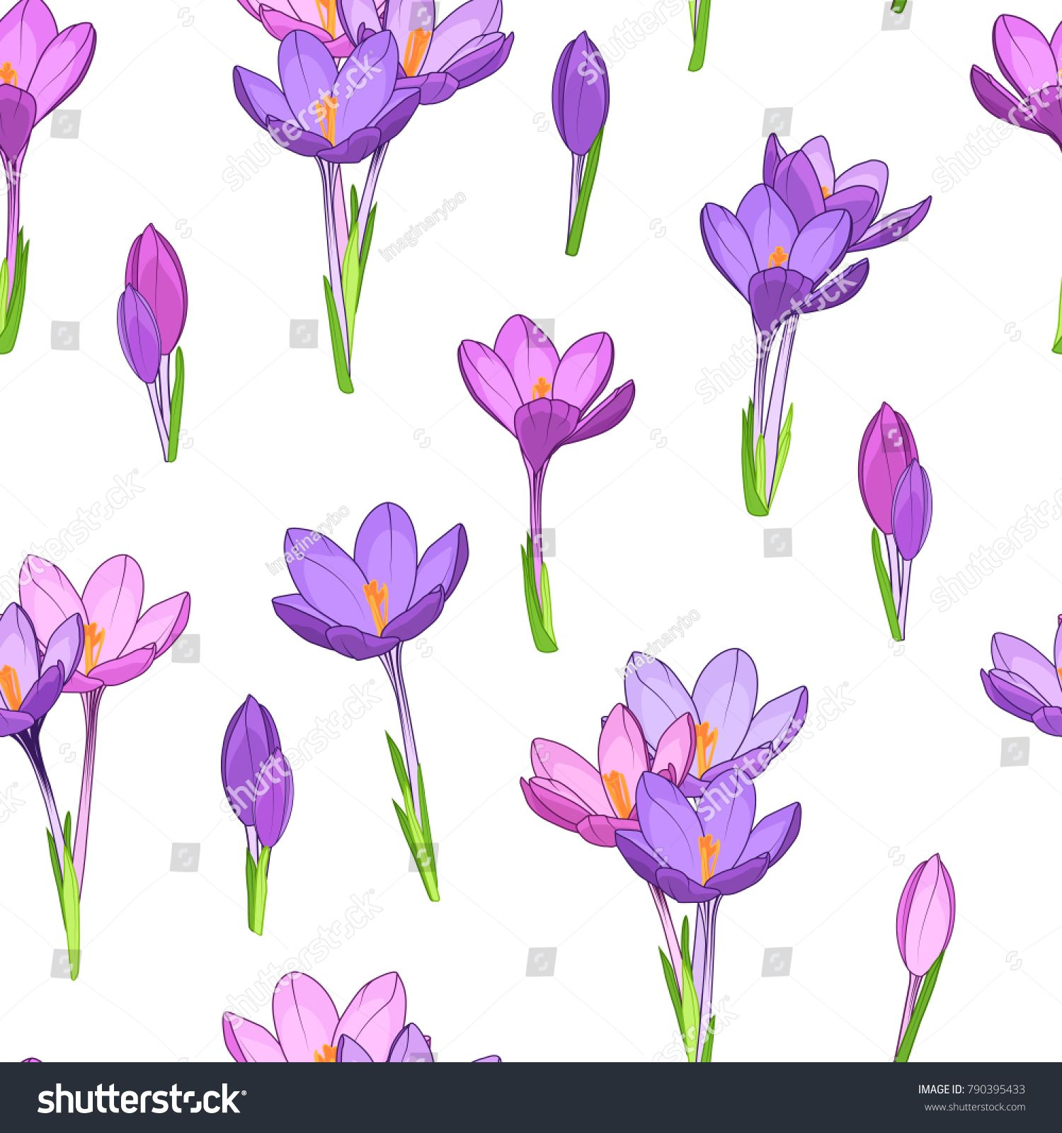 1500x1600 Crocus Saffron Purple Violet Spring Flowers Seamless Pattern