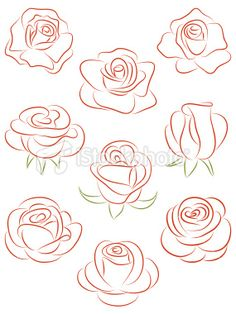 236x314 Set Of Flowers. Vector Illustration. Drawing Flowers, Drawings