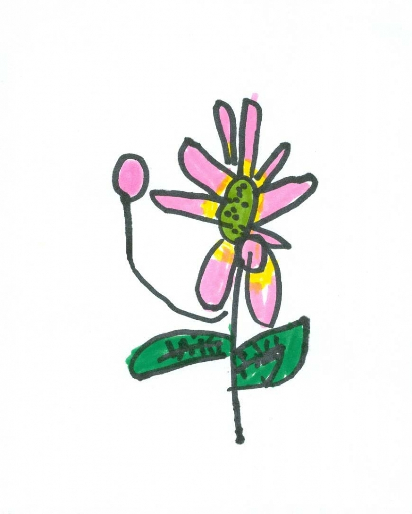 820x1024 Small Flower Drawings Art For Small Hands Drawing Flowers