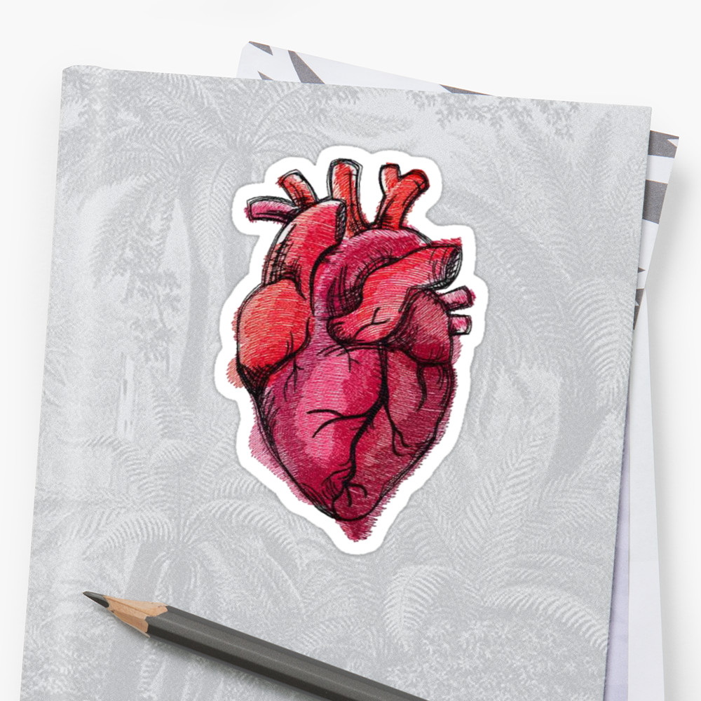 1000x1000 Realistic Heart Drawing Stickers By Decentart Redbubble