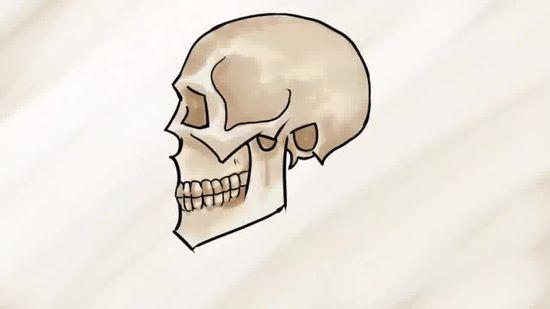 550x309 3 Ways To Draw A Skull