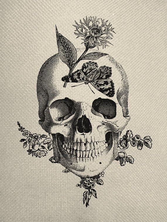 570x760 Skull With Butterfly Butterfly Skull Engraving Digital Collage