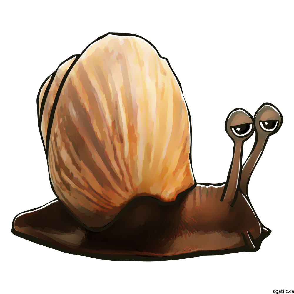 1000x1000 Cartoon Snail Drawing In 4 Steps With Photoshop