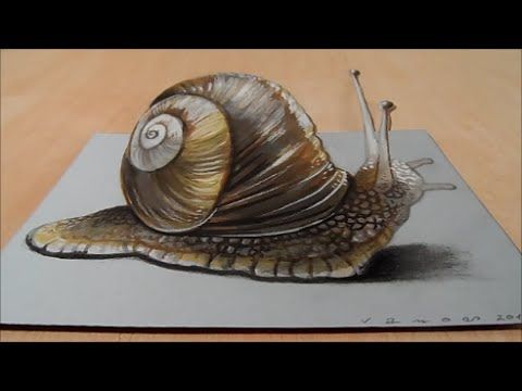 480x360 How To Draw 3d Snail