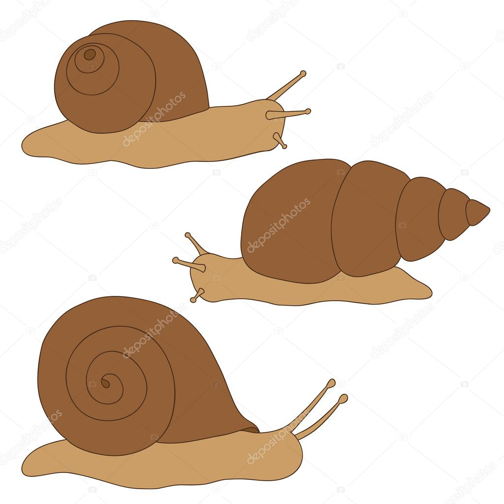 1024x1024 Set Of Colored Snails. Drawing Hand. Stock Vector