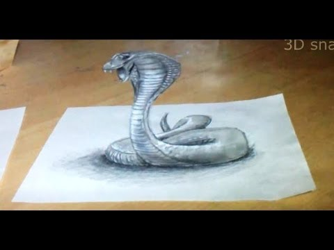 480x360 Anamorphic Illusion, Drawing Snake 3d