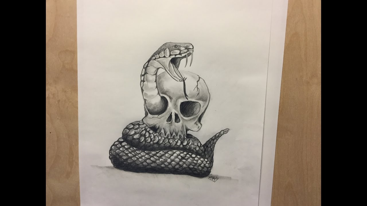 1280x720 How to draw a snake and skull, Snake and Skull Tattoo (Realistic