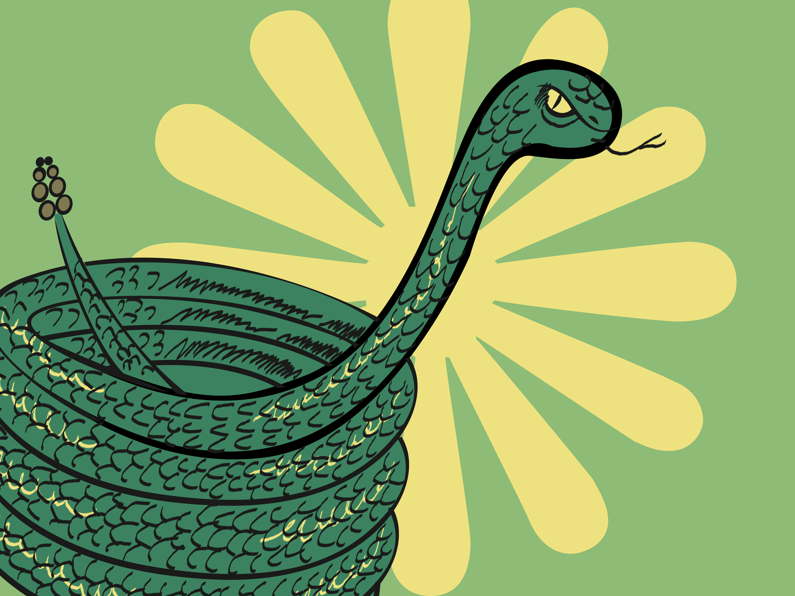 3200x2400 How To Draw A Coiled Snake 10 Steps (With Pictures)