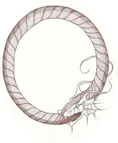 236x286 Ouroboros By ~ljotunnr On Snake Devouring Itself,
