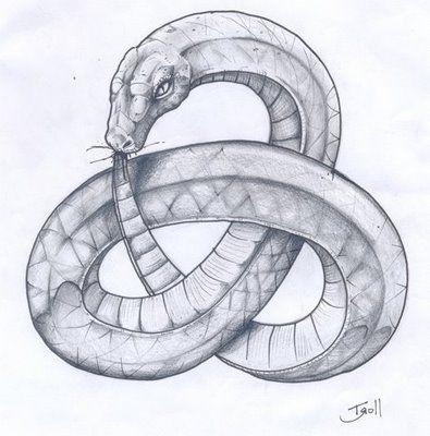 395x400 Snake Eating Itself Infinity