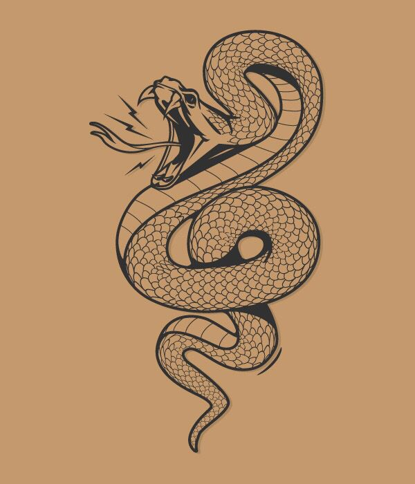 24+ Tattoo Drawings - Free PSD, AI, Vector EPS, PDF Format ... |Snake Tattoo Sketches