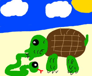 300x250 Giant Turtle With Mouth Open Eating A Snake