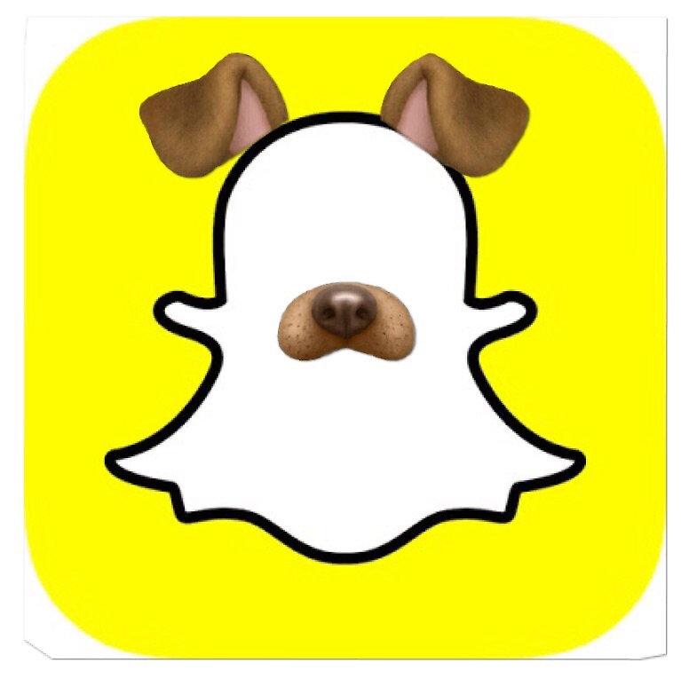 767x765 Image Result For Snapchat Logo With Dog Filter Sociaux