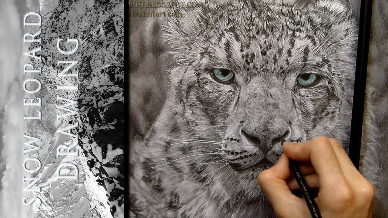 1280x720 Snow Leopard Drawing Realistic