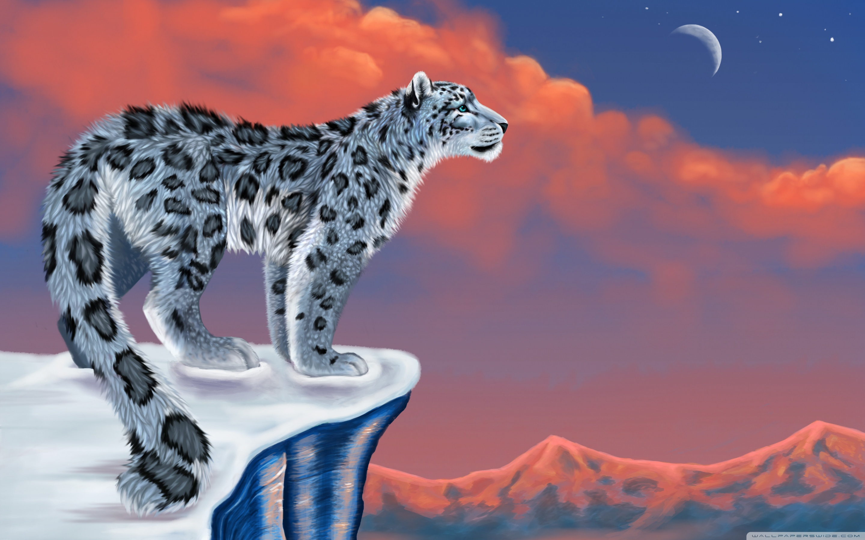 2880x1800 Snow Leopard Drawing 4k Hd Desktop Wallpaper For Tablet