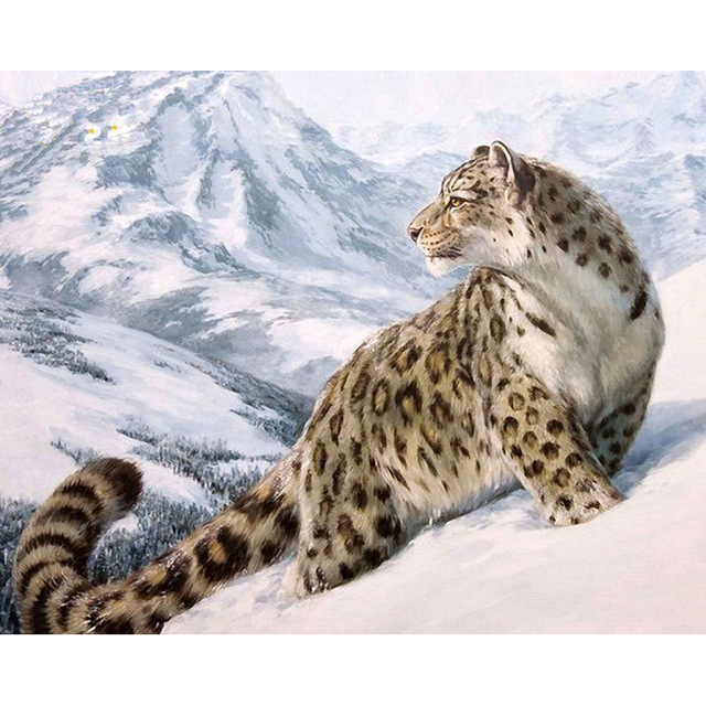 640x640 Unframed Snow Leopard Animals Diy Digital Painting By Numbers Kits