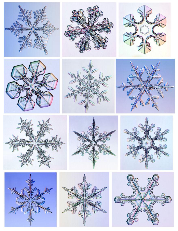 877x1142 Snowflake Activities For Kids