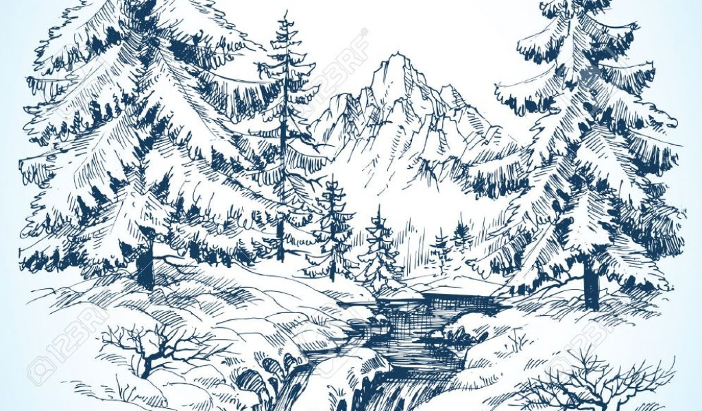 1024x600 Snowy Landscape Drawing Winter Snowy Landscape, Pine Forest