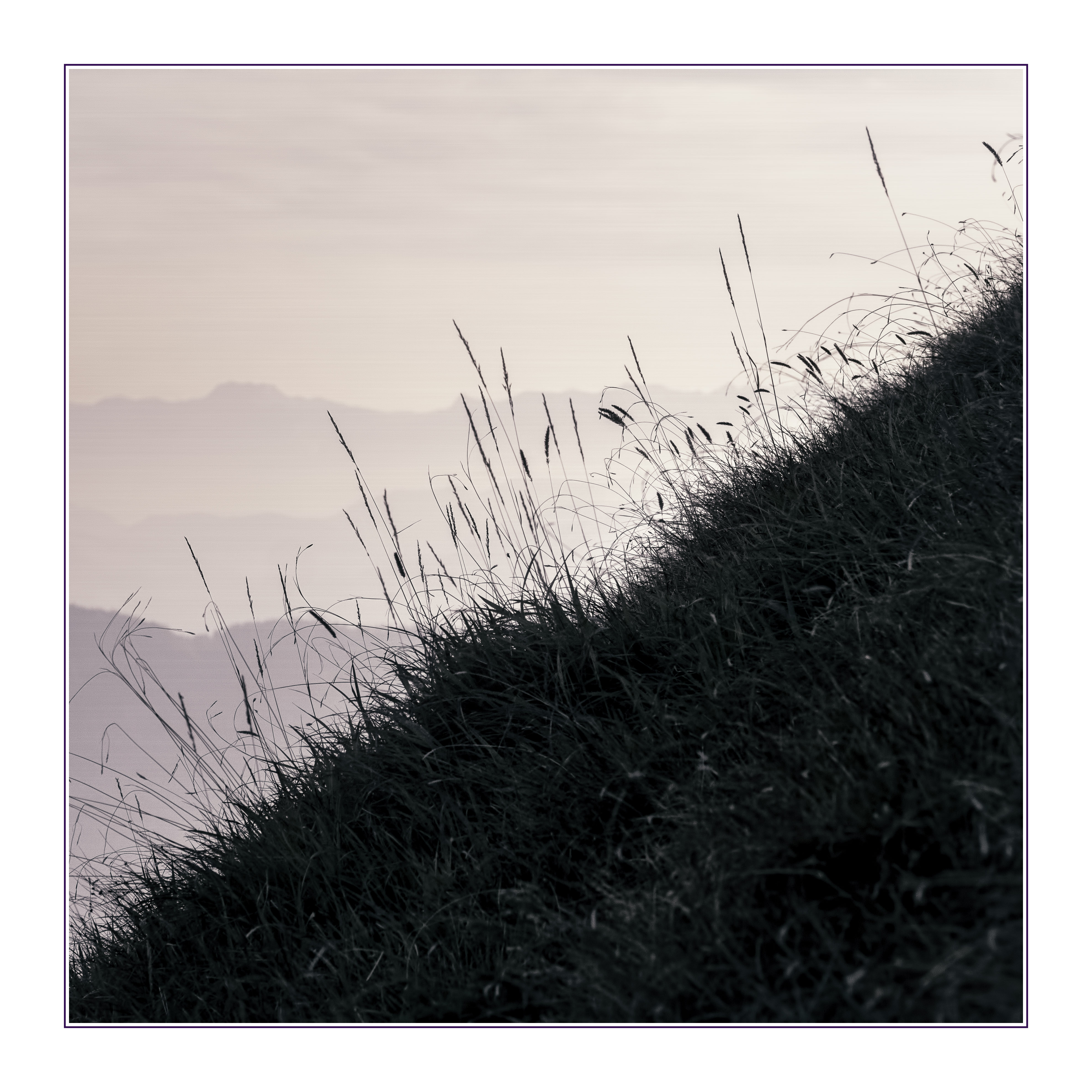 3956x3956 Free Images Grass, Black And White, Line, Soil, Austria, Sketch