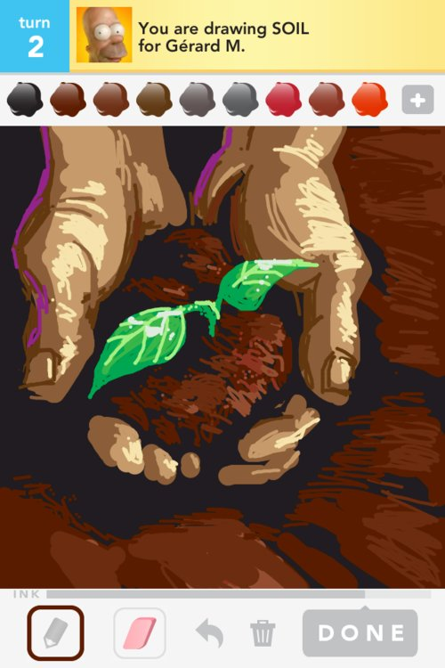 500x750 Soil Drawings
