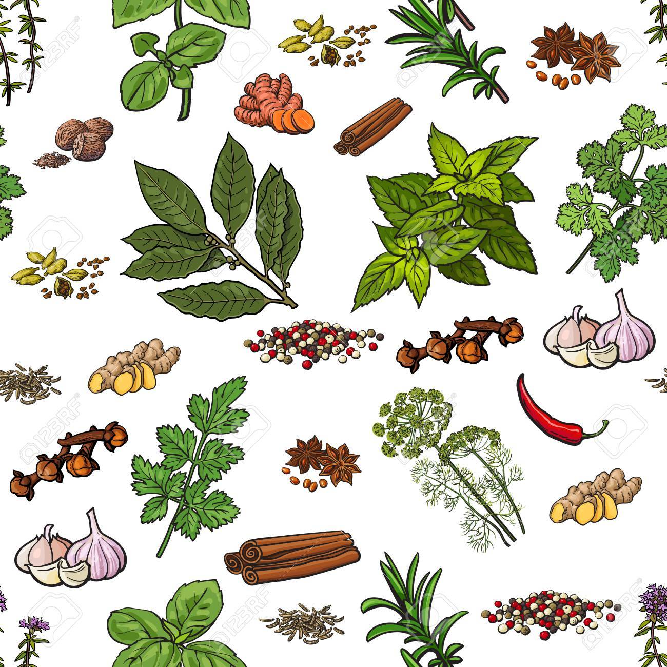 1300x1300 Seamless Pattern Of Hand Drawn Spices And Herbs, Sketch Style
