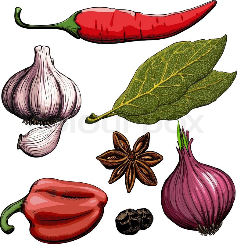 777x800 Spice. Onion, Garlic, Pepper, Bay Leaf, Hot Pepper Drawing Woodcut