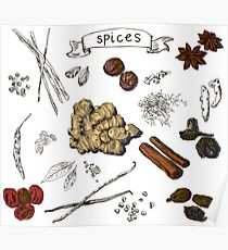210x230 Spices Drawing Posters Redbubble