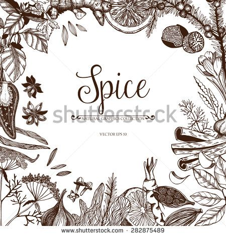 450x470 Vector Card Design With Hand Drawn Spices And Herbs. Decorative
