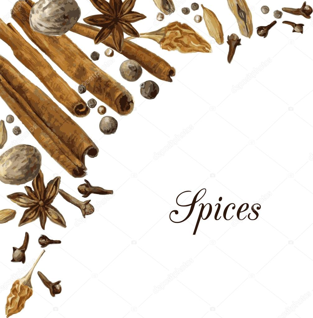 1006x1024 Spices Drawing By Watercolor Stock Vector Cat Arch Angel