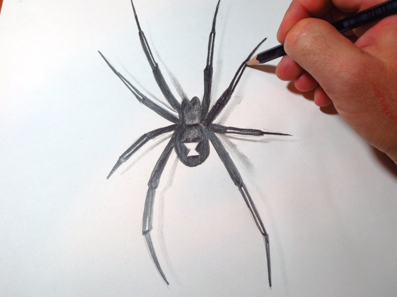 1600x1200 How To Draw Black Widow Spider