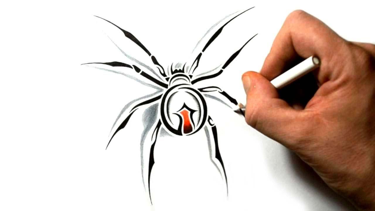 1280x720 How To Draw A Black Widow Spider