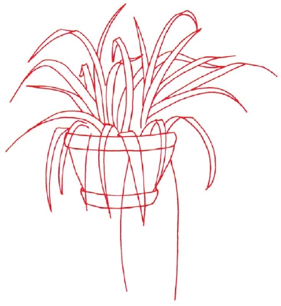 400x436 1. Outline The Plant