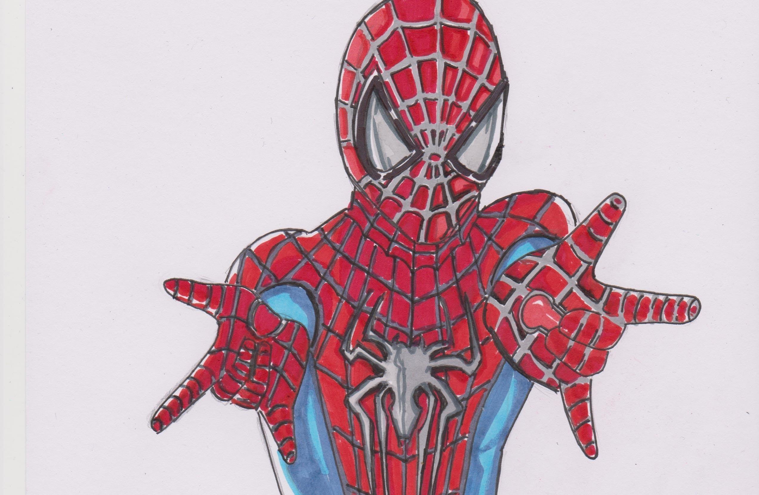 2544x1660 The Amazing Spider Man 2