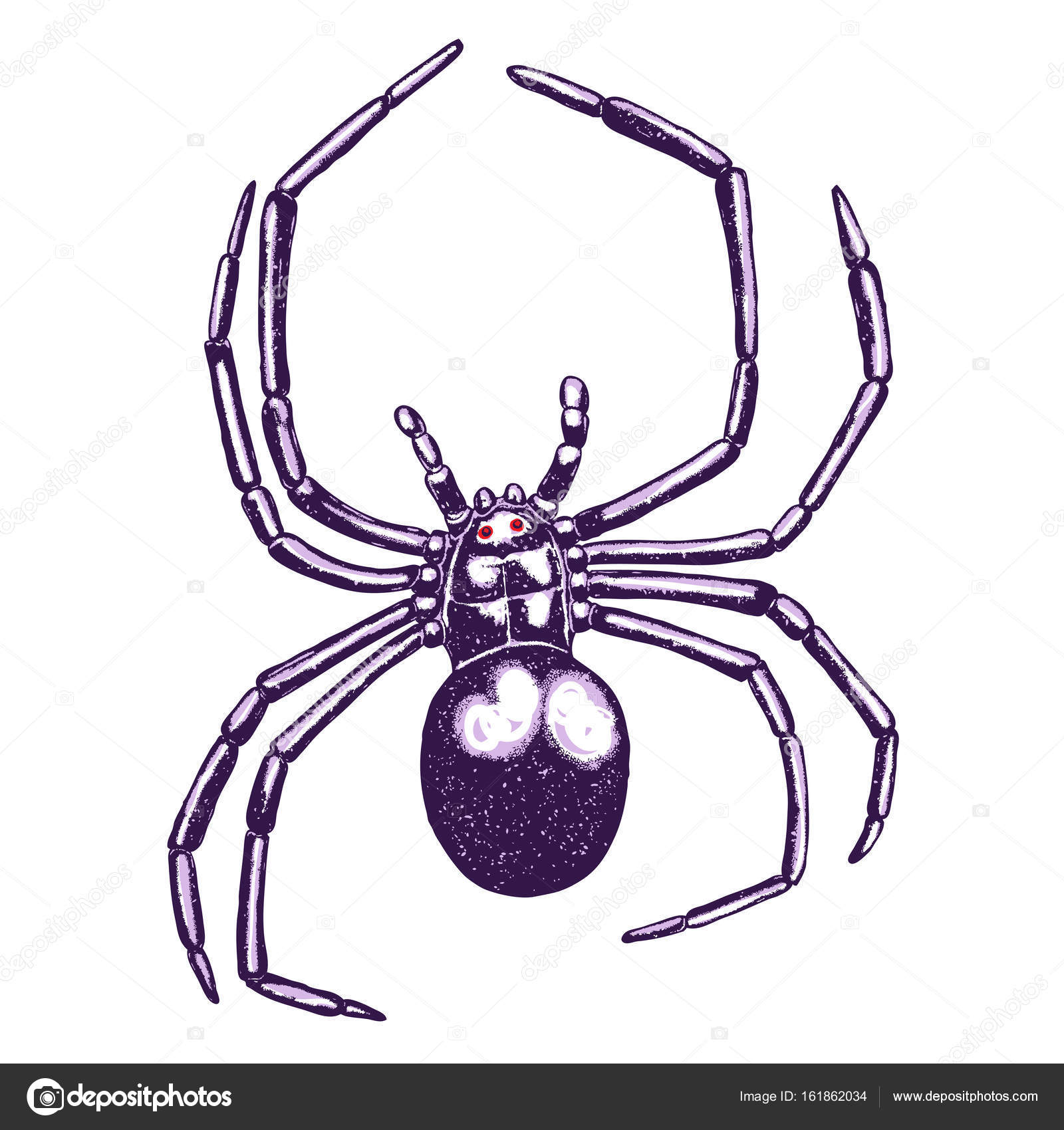 1600x1700 Stipple Drawing Of Spider Stock Vector Goldenshrimp