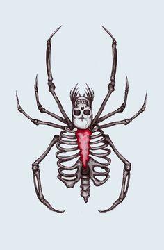 236x360 Spiders And Skulls Skulls Amp Skeletons Spider