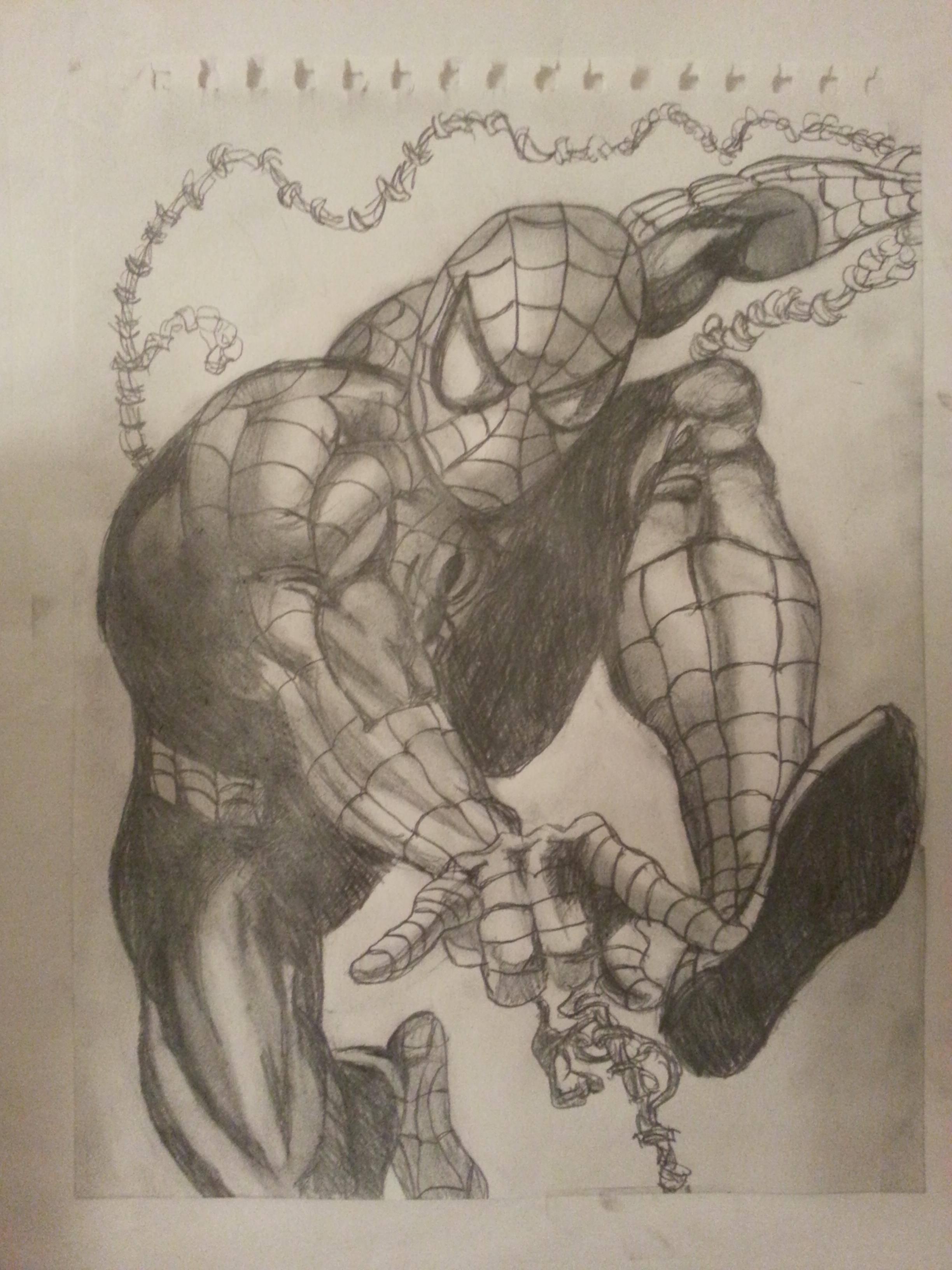 2448x3264 Spiderman Pencil Sketch