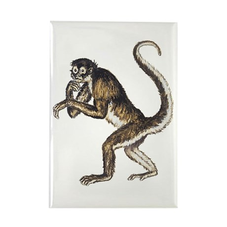 460x460 Spider Monkey Drawing Magnet Cafepress