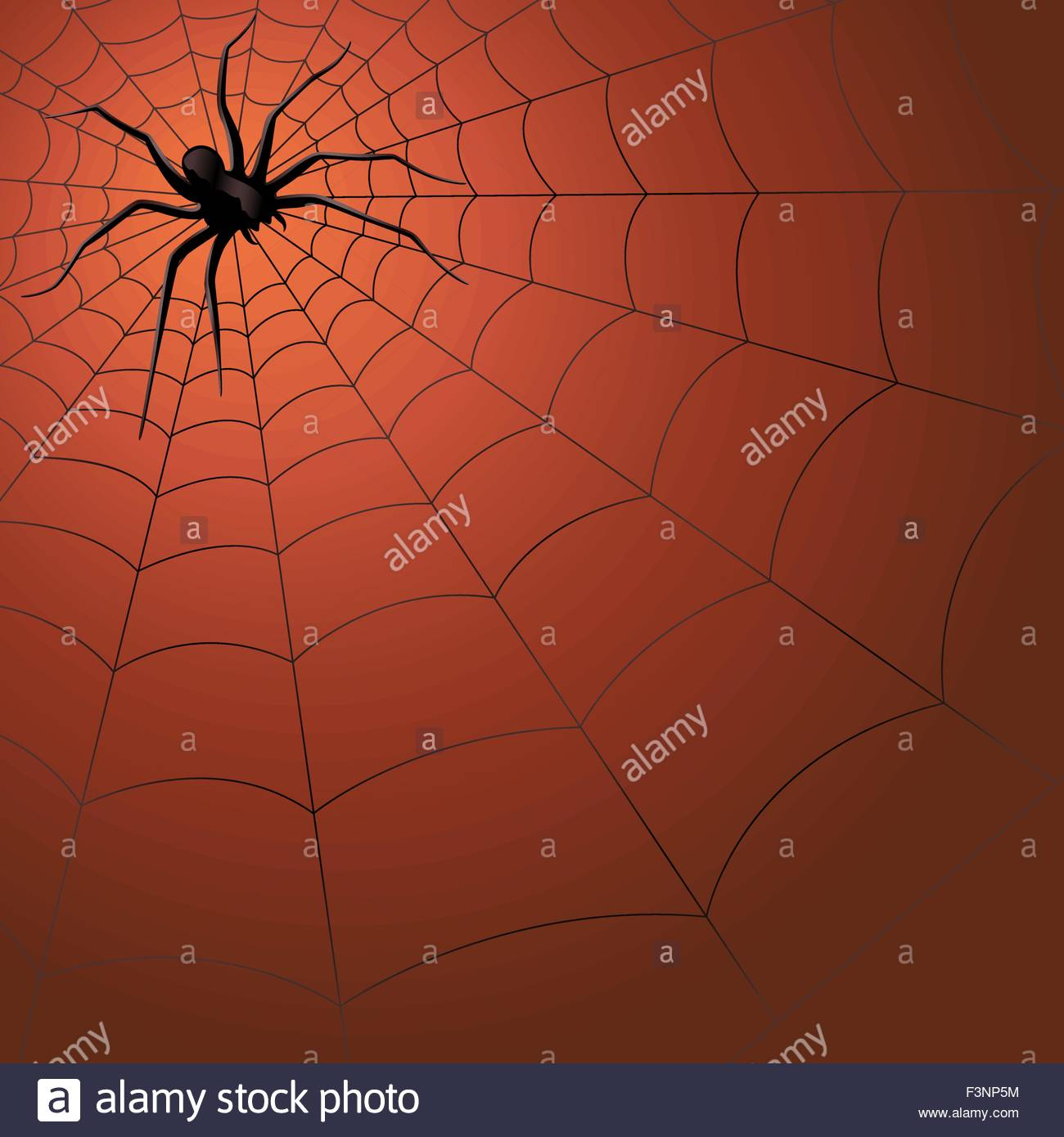 1300x1390 Big Dark Spider On The Web, Hand Drawing Halloween Vector Stock