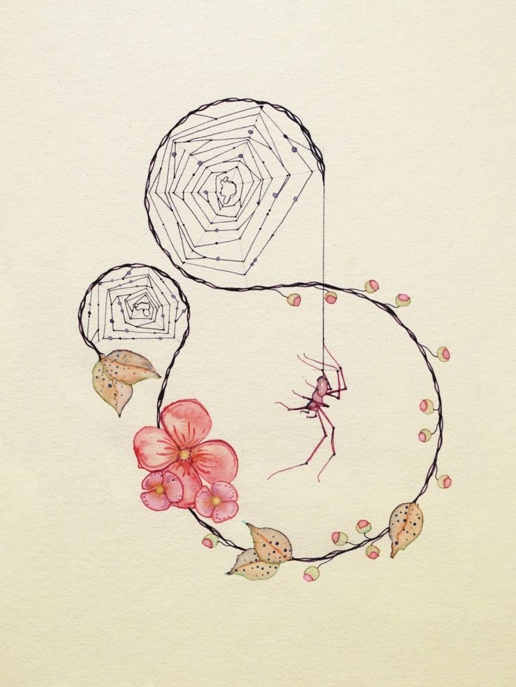 736x981 Image Result For Delicate Spider Web Drawing Nature Sleeve