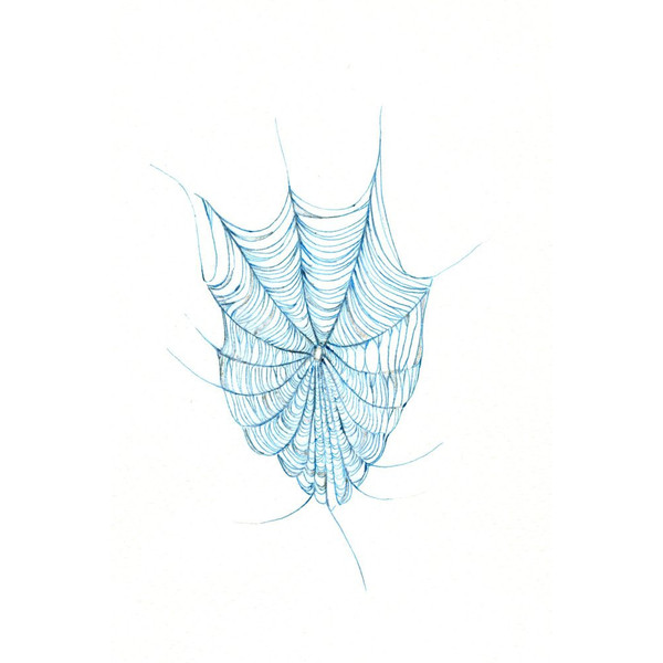 600x600 Spider Web Art Print Of An Original Drawing Available 5x7 Or 8x10