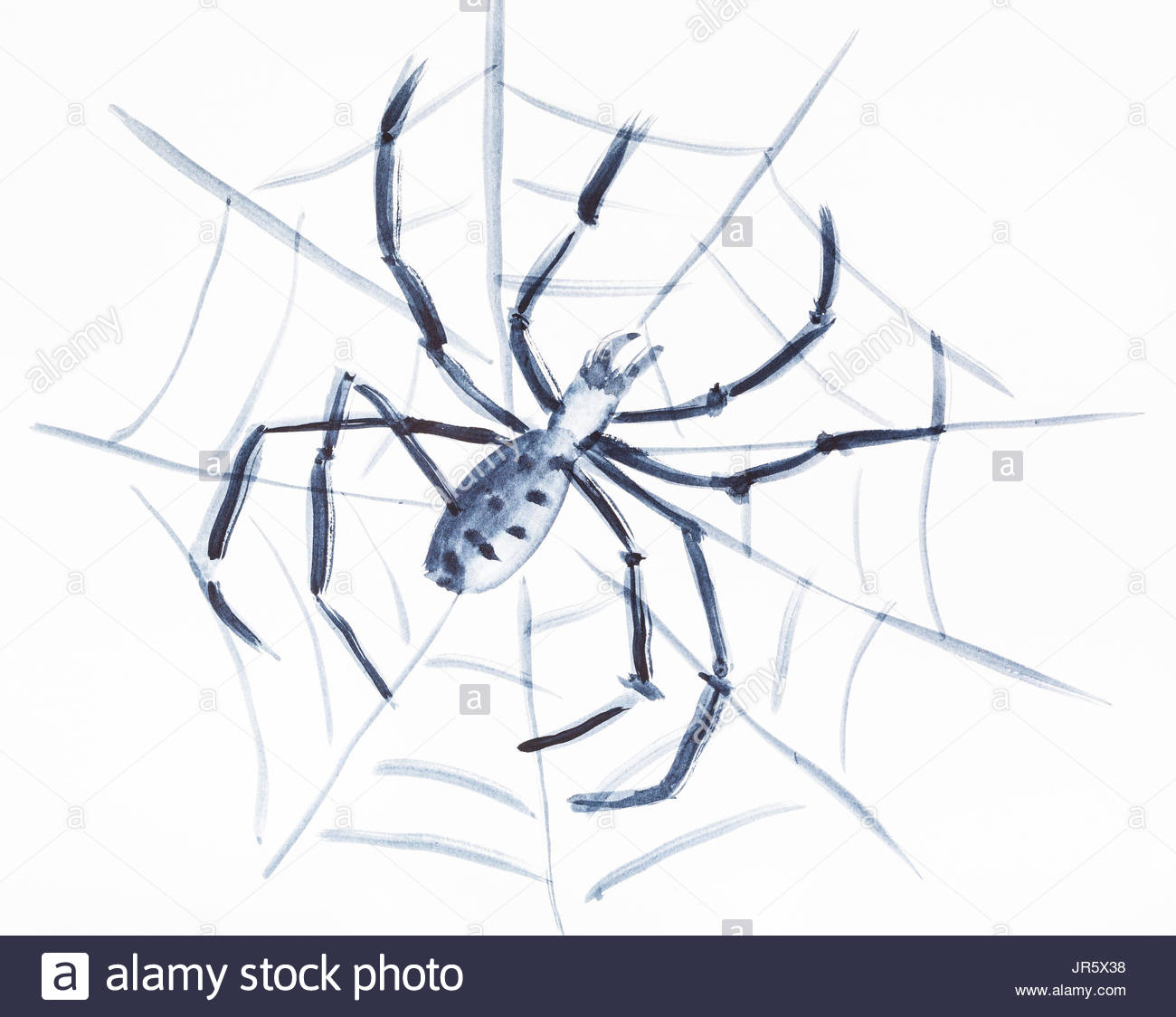 1300x1124 Spiderweb Cut Out Stock Images Amp Pictures