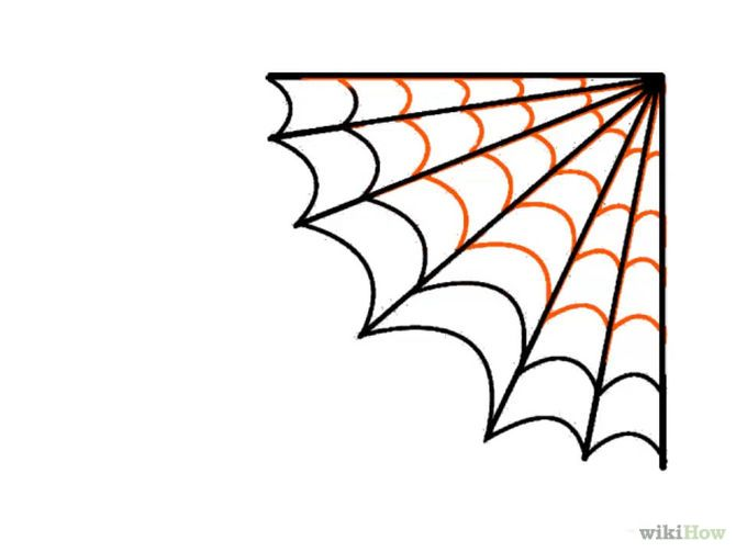 670x503 Draw A Spider Web Spider Webs And Spider